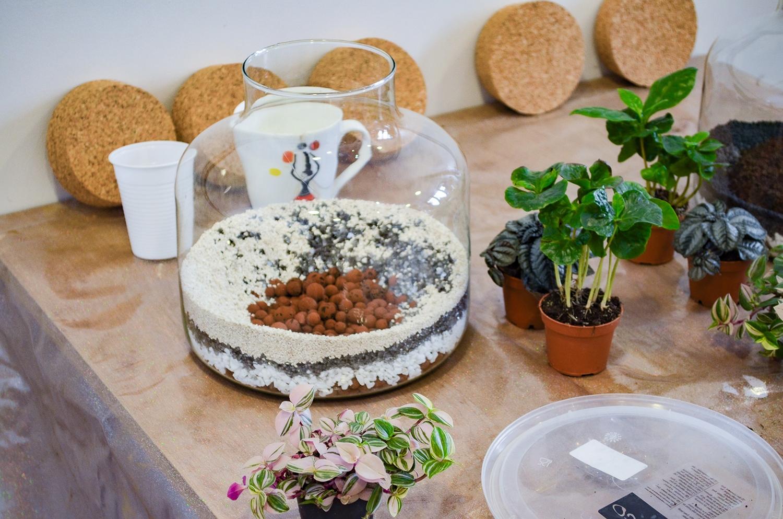 atelier_terrarium-be_vegetal-04-1