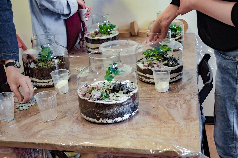 atelier_terrarium-be_vegetal-09