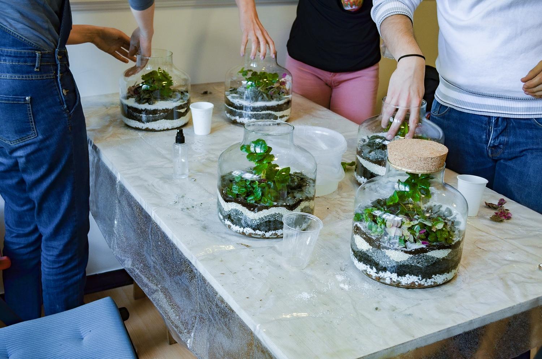 atelier_terrarium-be_vegetal-10